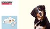 KORVIMIN ® DIAR Beutel mit 2x Tabletten - MHD 06/19. Bild vergrö�ern