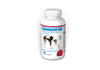 Cosequin ® DS Kapseln - 120 Streukapseln zur Unterstuetzung der Gelenkfunktion für Hunde - MHD 06/20 - ABVERKAUF - UVP 74,00 €. Bild vergrö�ern