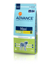 Junior Maxi - 15 kg Sack Spezialnahrung für junge Hunde 12 - 24 Monate. Bild vergrö�ern