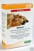 Relaxan ® 60 Tabletten für Hund und Katze. Bild vergrö�ern