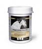 Equistro Percutin ® Paste 2.000 g Spezialpaste für Pferde. Bild vergrö�ern